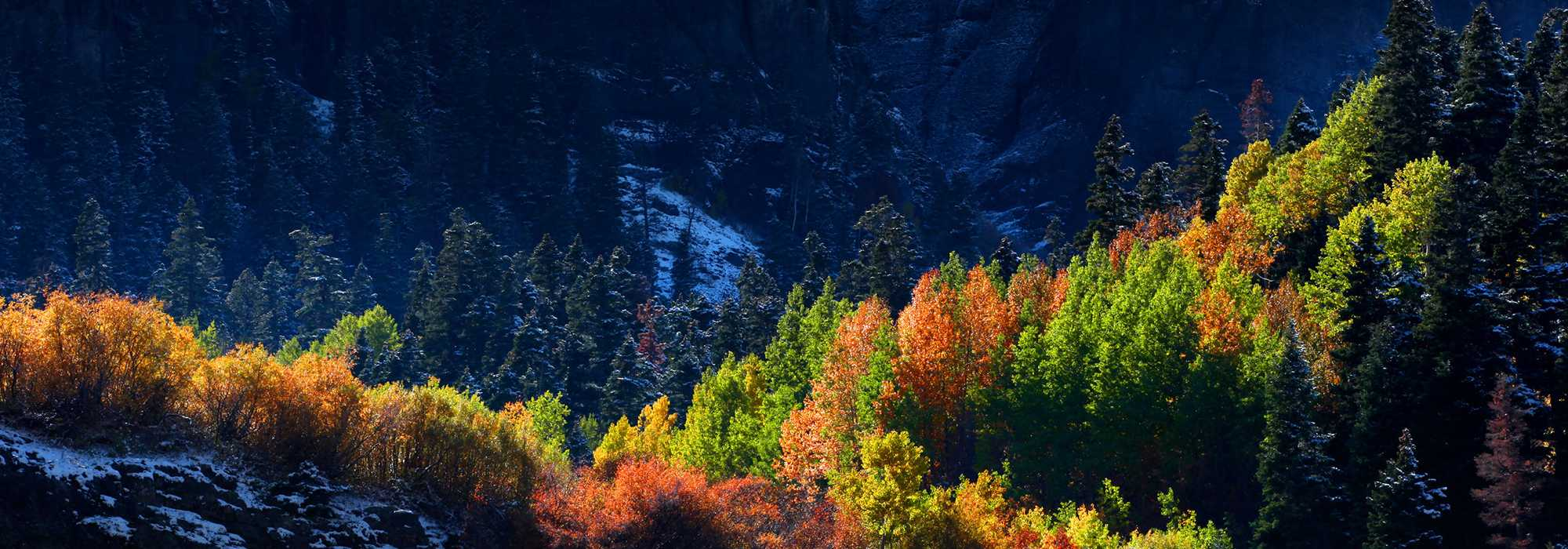 fall pic Foothills Heating & Cooling Denver